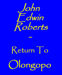 John Edwin Roberts - Return To Olongopo